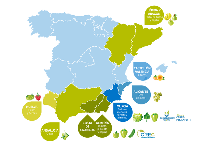 Proyectos Growing for the Future en España